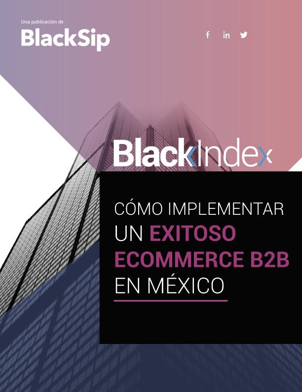 Cómo implementar un exitoso y efectivo e-commerce B2B en México