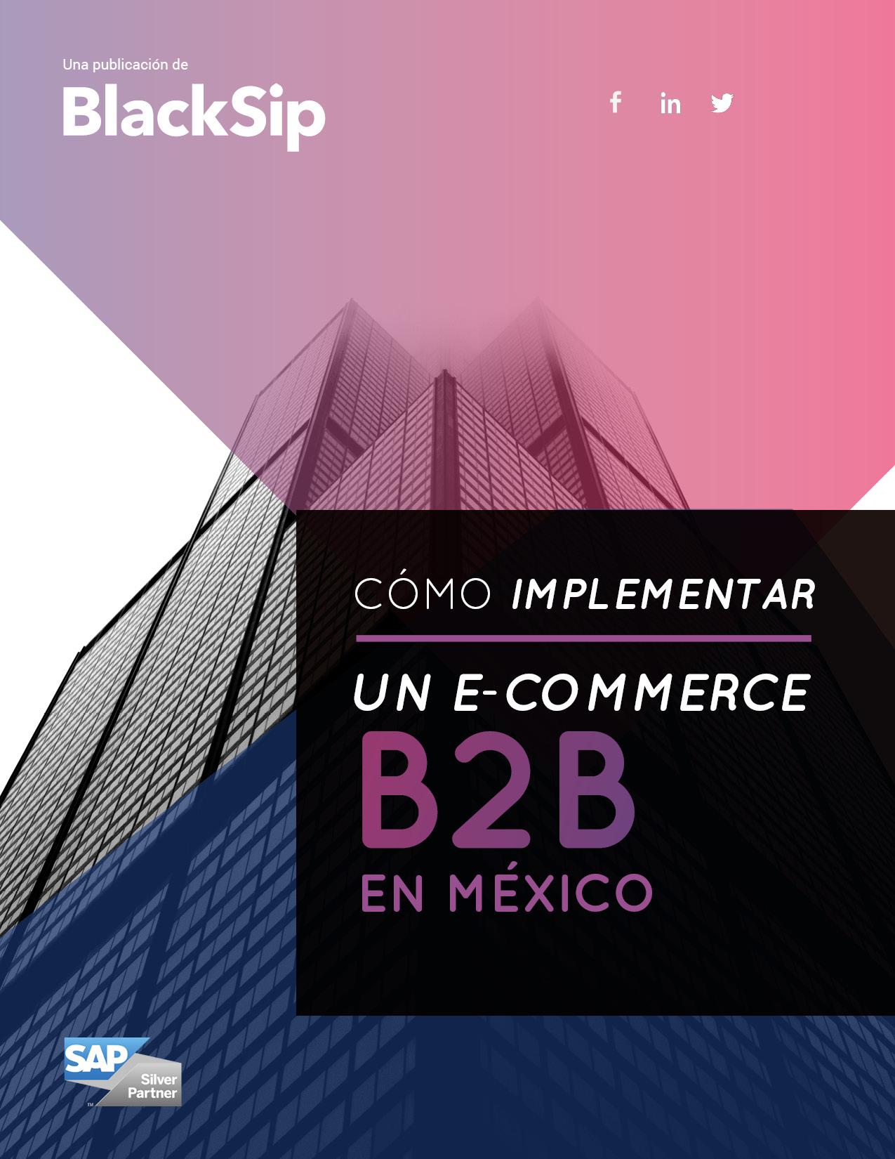 portada Ebook Ecommerce B2B en México